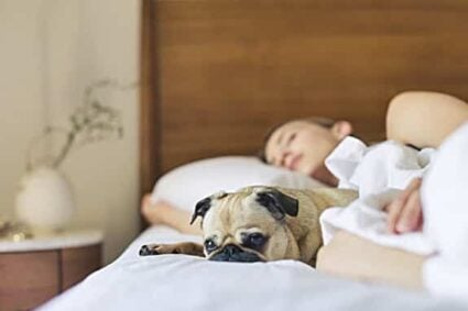 Will Sleeping With A Fan Make You Sick?